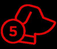 icona5
